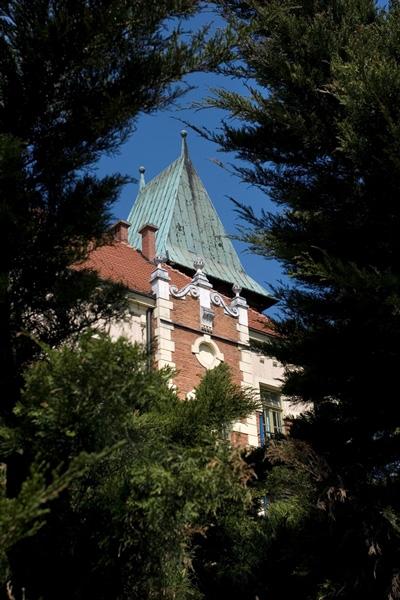 a Wodociągów Miasta Krakowa. Budynek z cegły.Ujęcie dachu.