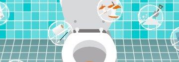 Światowy Dzień Toalet